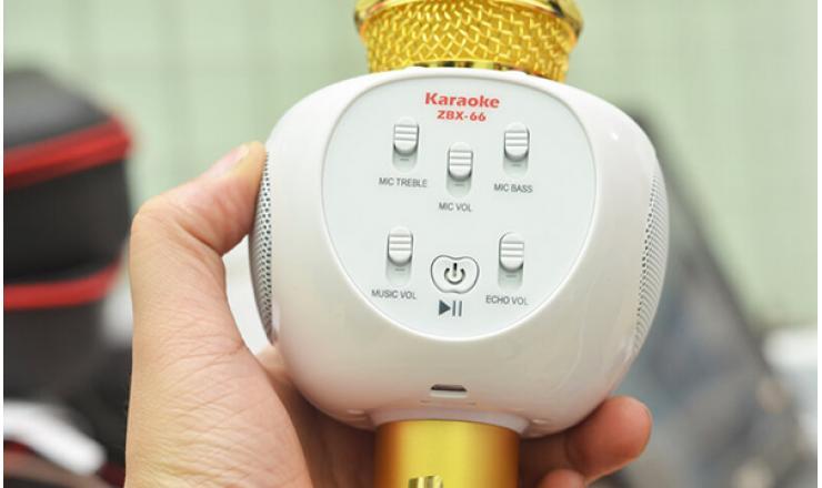 Micro karaoke Bluetooth ZBX-66