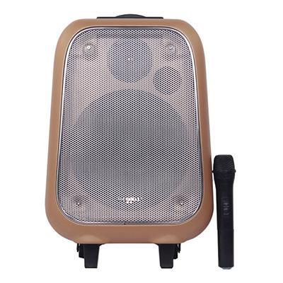 Loa Kéo Bluetooth Soundmax M6