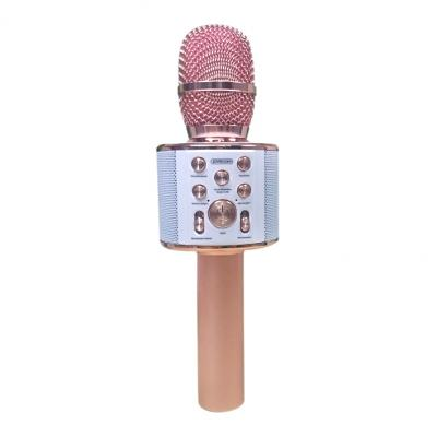 Micro Karaoke Bluetooth JR-MC1
